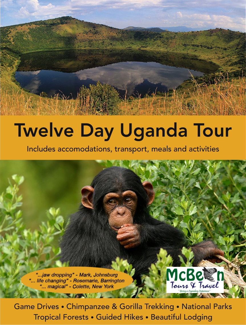 Twelve Day Uganda Safari